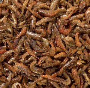 Al-Ko-Te Süßwasser-Shrimps 175 Gramm