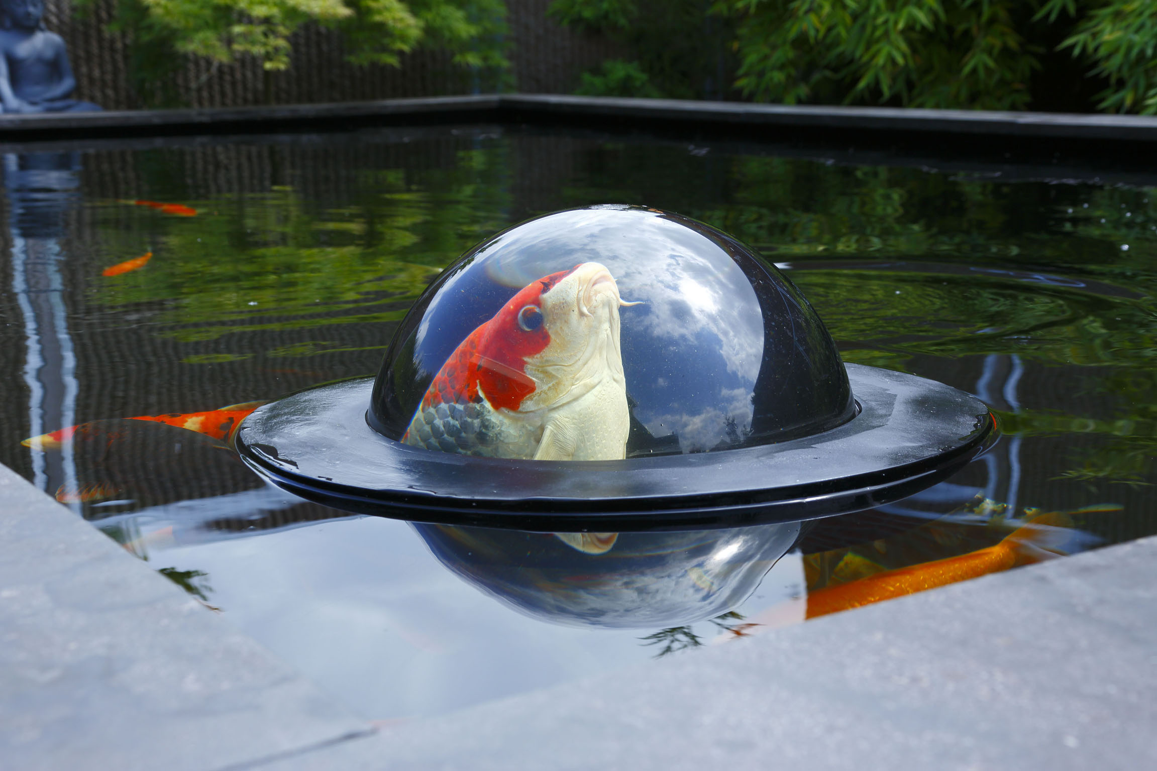 Velda Floating Fish Dome M -  schwimmende Fischkuppel
